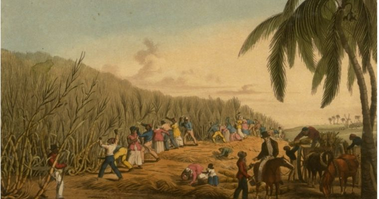 The Dark and Stormy and a Brief History of Rum